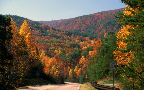 talladega_national_forest_scenic_view_2-psd