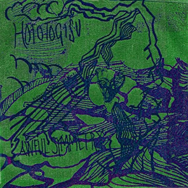 hototogisu-awfulsymmetrycover